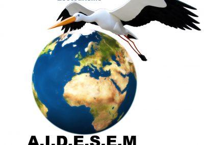 AIDESEM