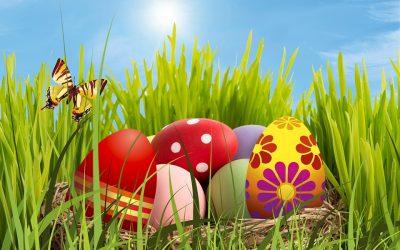 chasse aux œufs lundi 22 avril – de 10 à 12h – parc de Malpagat
